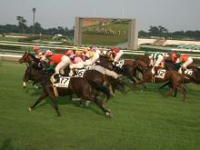2007中山レース