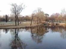 オーブラ公園1
