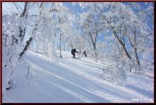 ロフトで綴る山と山スキー-1本目のダイブ