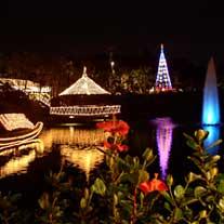 東南植物楽園のクリスマス