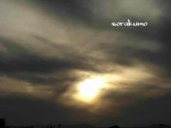 ソラクモ-sorakumo-110