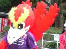 シフクノトキ-鳥