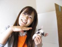 ojijiのブログ-アイーン