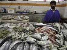 fish souk2