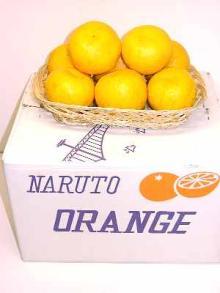 鳴門オレンジ