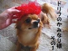 かみなり様 1