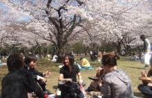 桜0327-1