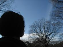 true-winter sky