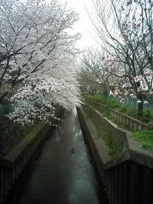 2008-03-30_10-53.jpg