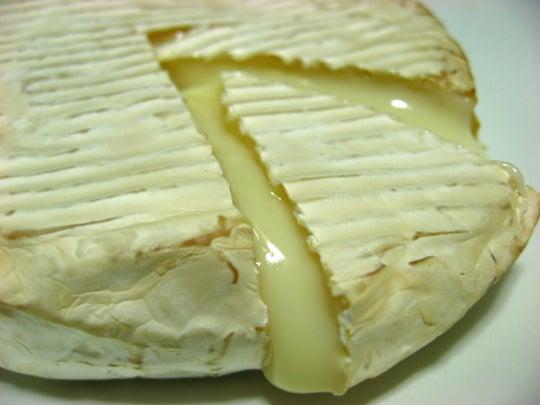 田中義剛 花畑牧場 北海道 カチョカヴァロ カマンベールチーズ