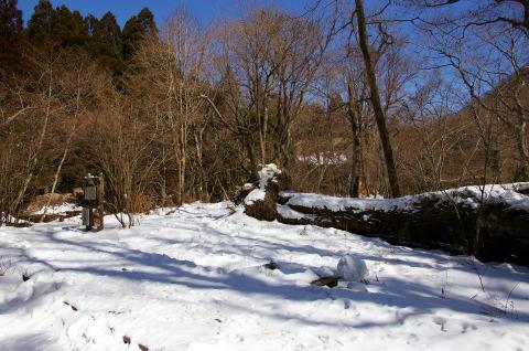 すごい雪景色