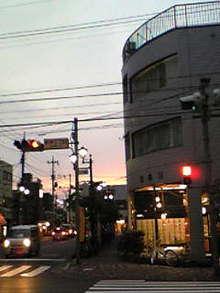 Image538.jpg