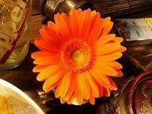 大好きなオレンジ色は元気の素。