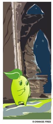 エコの森の冒険ブログ