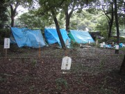 代々木公園2005.9.24