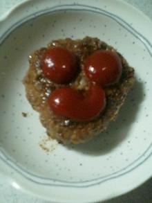 ぷなハンバーグ