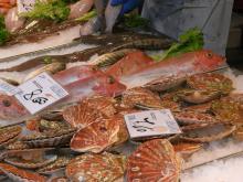 市場の魚屋にて