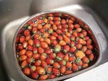 苺ジャム1