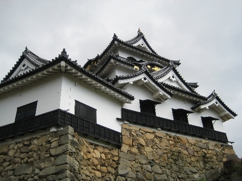 彦根城 天守台石垣