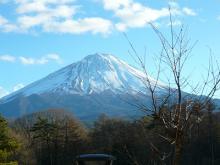 うさちゃんの徒然日記-富士山