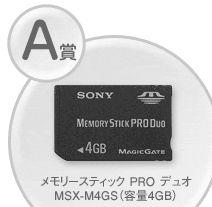 MSX-M4GS(4GB)