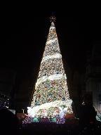 USJのクリスマスツリー12