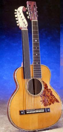 ハープギター1