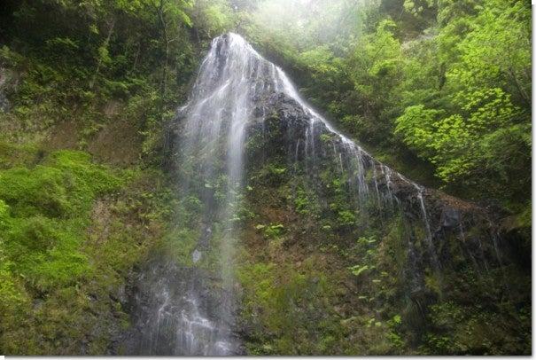 うなぎ滝3