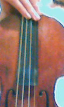 ヴァイオリンとMINEの芸術的な?!暮らし
