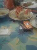 みーくんが食べる蟹.jpg