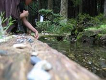 高根悲願寺の名水