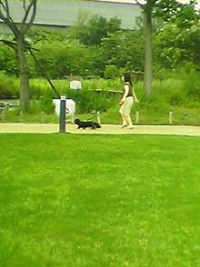 公園で歩くの図
