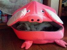 臣の野良猫仕事日記-200812311122000.jpg