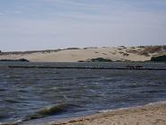 遠くから砂丘を眺める