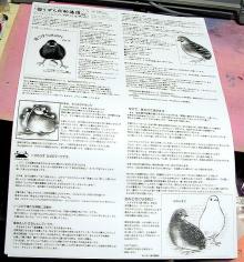 絵日記ブログ・姫うずらまみれ-ペーパー