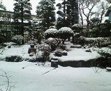 沙魚のお気楽日記-雪化粧な庭