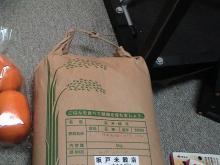 日記/食料支援物資_05