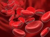 血液サラサラ食材リスト