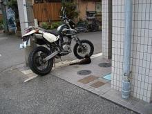 くろちゃん-125