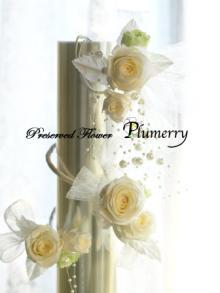 Plumerry(プルメリー)プリザーブドフラワースクール (千葉・浦安校)-アームアクセサリー プリザーブドフラワー