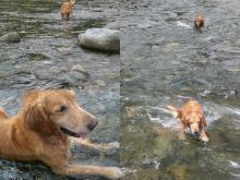 水は冷たい&スッゴイきれい。 誰も来ません!(^^)!