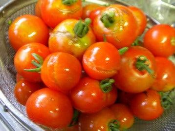 割れたトマト