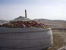 中国 内モンゴル 肉