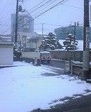 1801雪