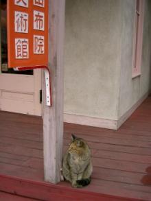 美術館と猫