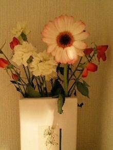 0402リコーダー部/とんちゃんからもらったお花♪
