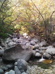 祖母山 川上渓谷