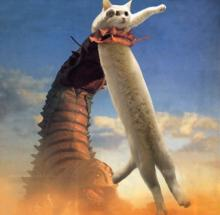 のびる猫伝説⑨
