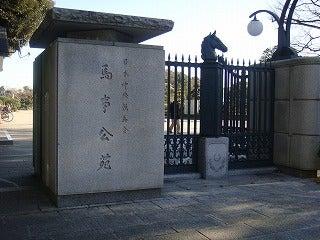旅犬Laniのほほん風船記-馬事公苑