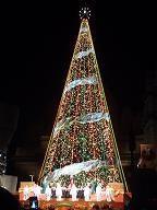 USJのクリスマスツリー5